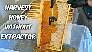 Harvest Honey - Part 4