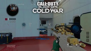 Call Of Duty Black Ops Cold War Gameplay: MULTIPLAYER SNIPING MONTAGE